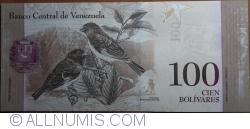 Imaginea #2 a 100 Bolivares 2013 (29. X.)