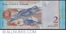 Imaginea #2 a 2 Bolivares 2007 (20. III.)