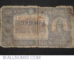Imaginea #1 a 1000 Coroane 1923