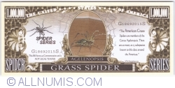 Image #1 of 1 000 000 - 2015 - Grass Spider (Agelenopsis)