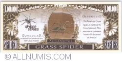 Imaginea #1 a 1 000 000 - 2015 - Păianjenul de iarbă (Agelenopsis)