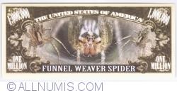 1 000 000 - 2015 - Păianjenul de iarbă (Agelenopsis)