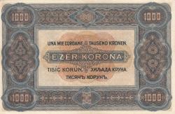 Imaginea #2 a 1000 Coroane 1920 (1. I.)
