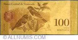 Imaginea #2 a 100 Bolivares 2015 (5 .XI.)