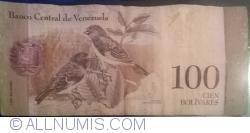 Imaginea #2 a 100 Bolivares 2011 (3. II.)