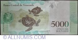 Imaginea #2 a 5000 Bolivares 2017 (13. XII.)