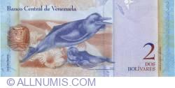 Imaginea #2 a 2 Bolivares 2008 (19. XII.)
