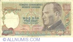 Image #1 of 5000 Lira ND (1981)