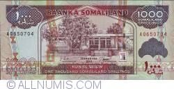 Imaginea #1 a 1000 Shillings 2011
